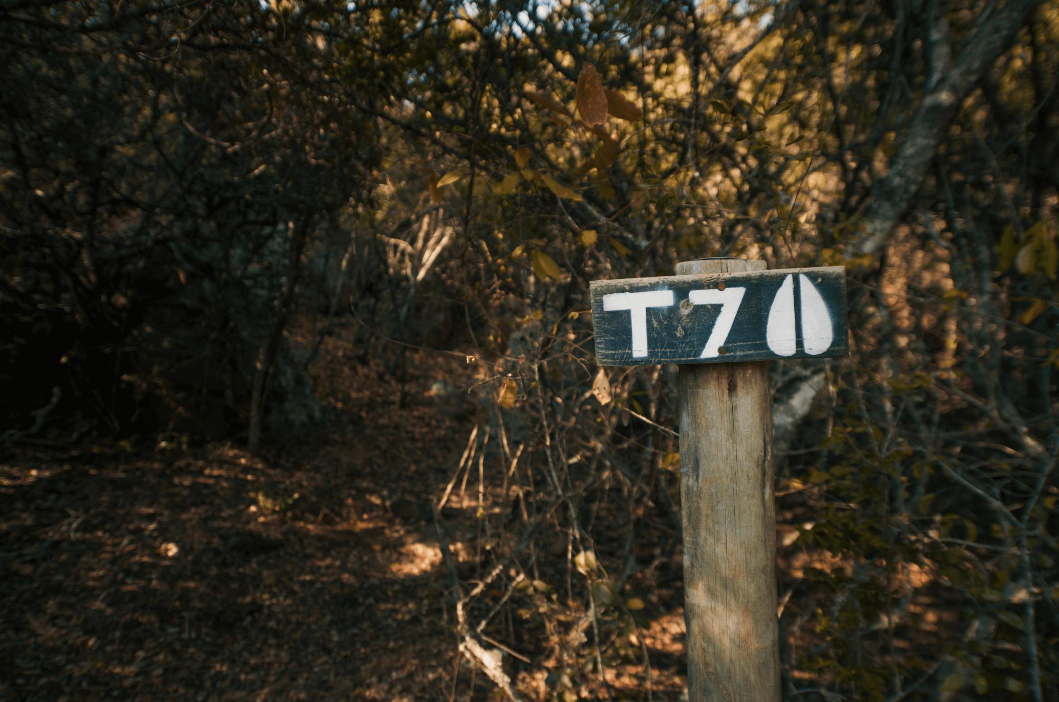 T7-01